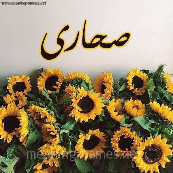 صورة اسم صحارى SHARA شكل 17 صوره دوار الشمس للإسم بخط رقعة