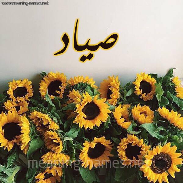 صورة اسم صياد Syad شكل 17 صوره دوار الشمس للإسم بخط رقعة