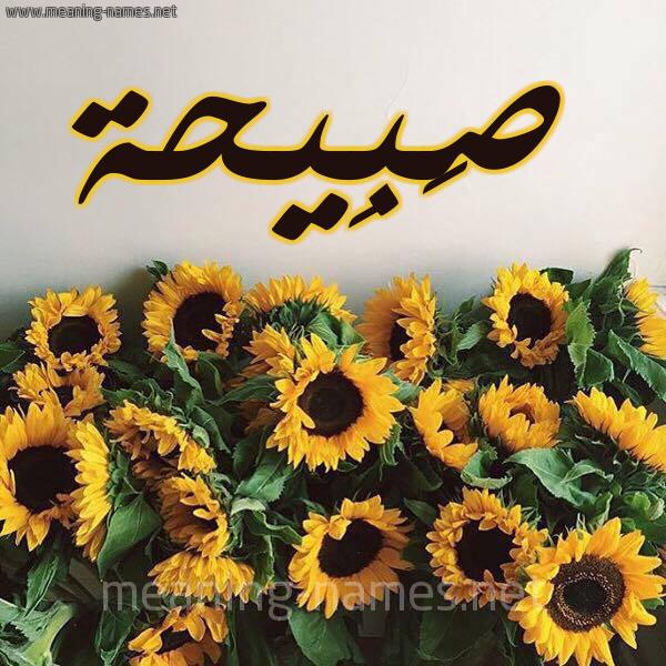 صورة اسم صَبِيحة SABEIHH شكل 17 صوره دوار الشمس للإسم بخط رقعة