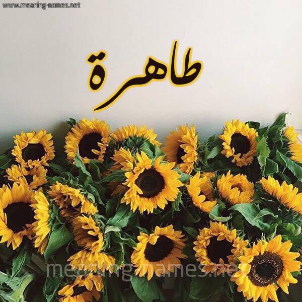 صورة اسم طاهرة Tahrh شكل 17 صوره دوار الشمس للإسم بخط رقعة