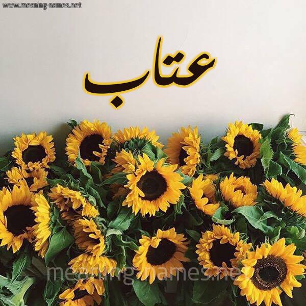 صورة اسم عتاب Atab شكل 17 صوره دوار الشمس للإسم بخط رقعة