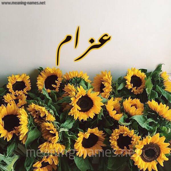صورة اسم عزام Azam شكل 17 صوره دوار الشمس للإسم بخط رقعة