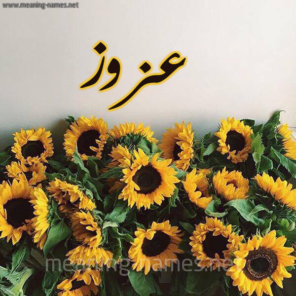 صورة اسم عزوز Azoz شكل 17 صوره دوار الشمس للإسم بخط رقعة
