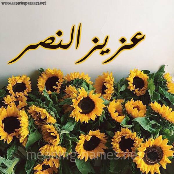 صورة اسم عزيزالنصر Azyzalnsr شكل 17 صوره دوار الشمس للإسم بخط رقعة