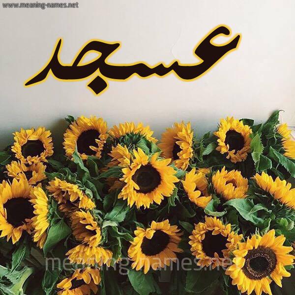 صورة اسم عسجد Asjd شكل 17 صوره دوار الشمس للإسم بخط رقعة