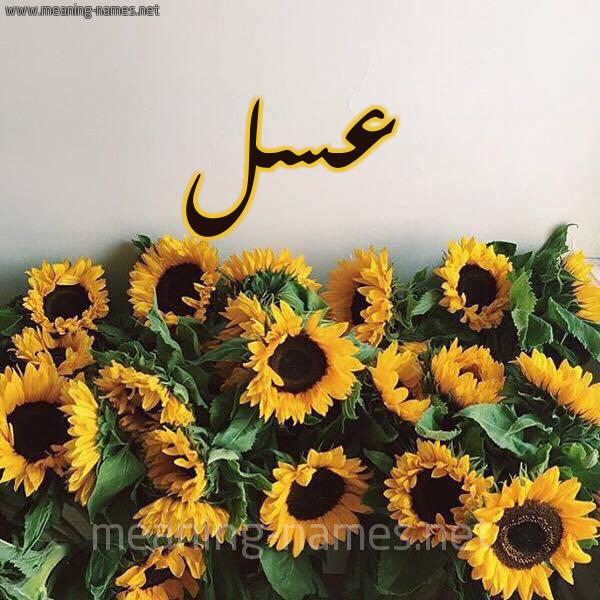 صورة اسم عسل Asl شكل 17 صوره دوار الشمس للإسم بخط رقعة