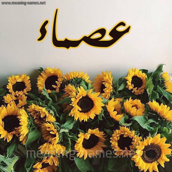 صورة اسم عصماء Asma'a شكل 17 صوره دوار الشمس للإسم بخط رقعة