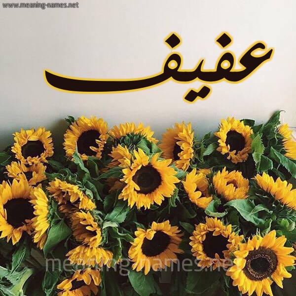 صورة اسم عفيف Afyf شكل 17 صوره دوار الشمس للإسم بخط رقعة