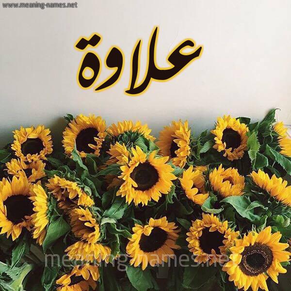 صورة اسم علاوة alawa شكل 17 صوره دوار الشمس للإسم بخط رقعة