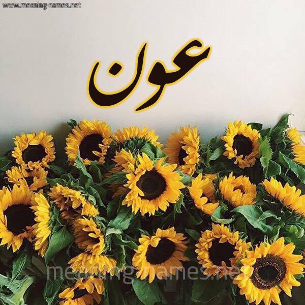 صورة اسم عون Awn شكل 17 صوره دوار الشمس للإسم بخط رقعة