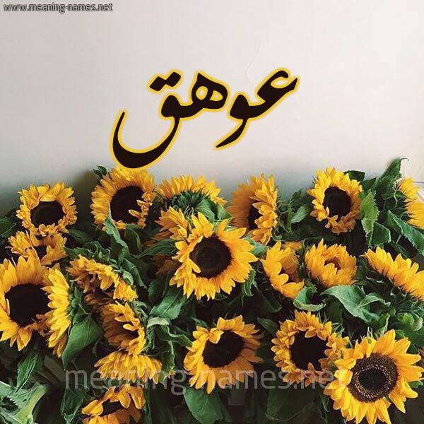 صورة اسم عوهق Awhq شكل 17 صوره دوار الشمس للإسم بخط رقعة