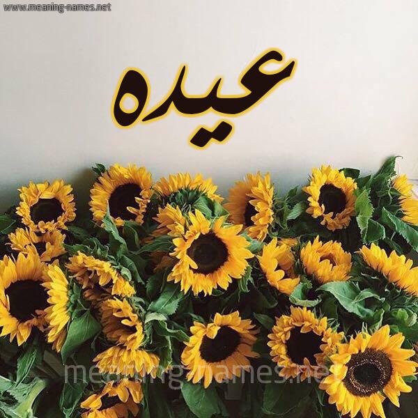 كل زخرفة وحروف Aydh زخرفة أسماء كول