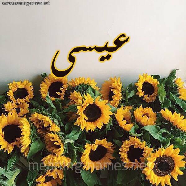 صورة اسم عيسى Eissa شكل 17 صوره دوار الشمس للإسم بخط رقعة