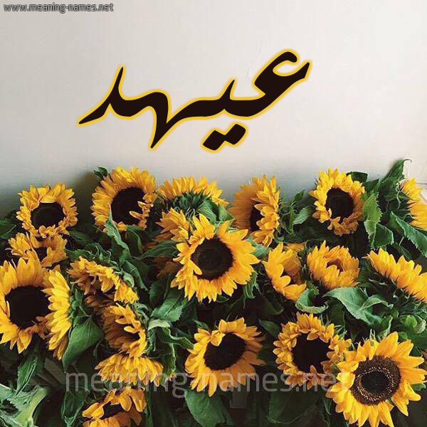 صورة اسم عيهد Ahd شكل 17 صوره دوار الشمس للإسم بخط رقعة