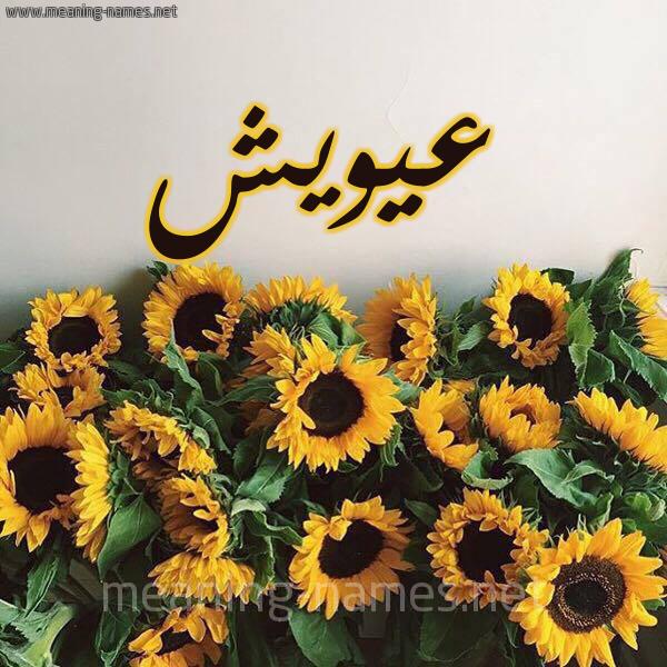 صورة اسم عيويش Ayouch شكل 17 صوره دوار الشمس للإسم بخط رقعة