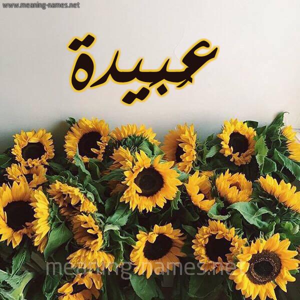 صورة اسم عُبَيدة Aobida شكل 17 صوره دوار الشمس للإسم بخط رقعة