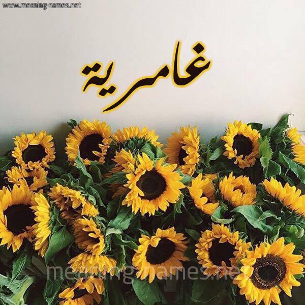 شكل 17 صوره دوار الشمس للإسم بخط رقعة صورة اسم غامرية Ghamryh