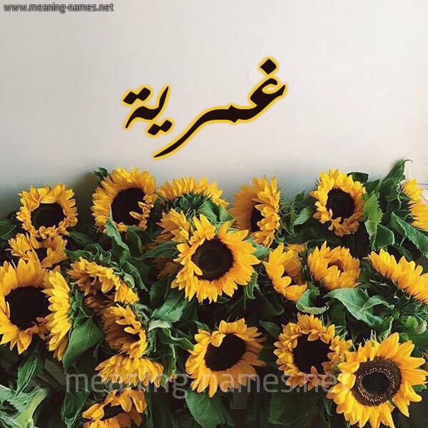 صورة اسم غمرية Ghmryh شكل 17 صوره دوار الشمس للإسم بخط رقعة