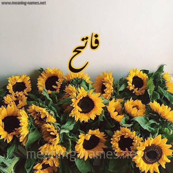 صورة اسم فاتح Fath شكل 17 صوره دوار الشمس للإسم بخط رقعة