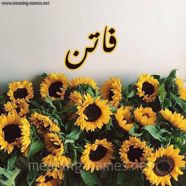 صورة اسم فاتن Faten شكل 17 صوره دوار الشمس للإسم بخط رقعة