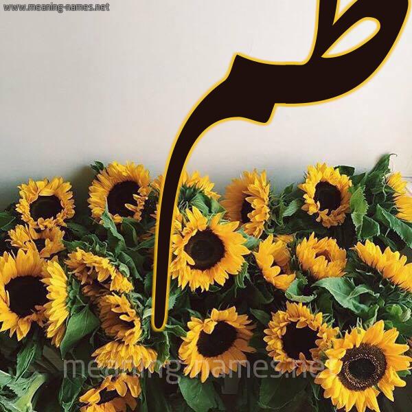 صورة اسم فاطم FATM شكل 17 صوره دوار الشمس للإسم بخط رقعة