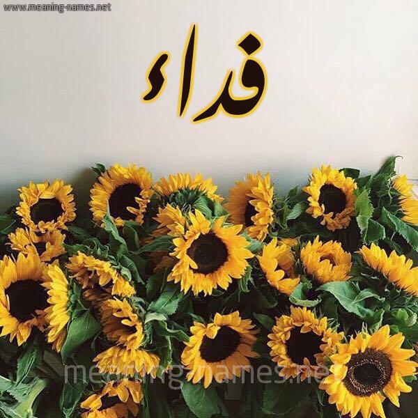 صورة اسم فداء Fedaa شكل 17 صوره دوار الشمس للإسم بخط رقعة