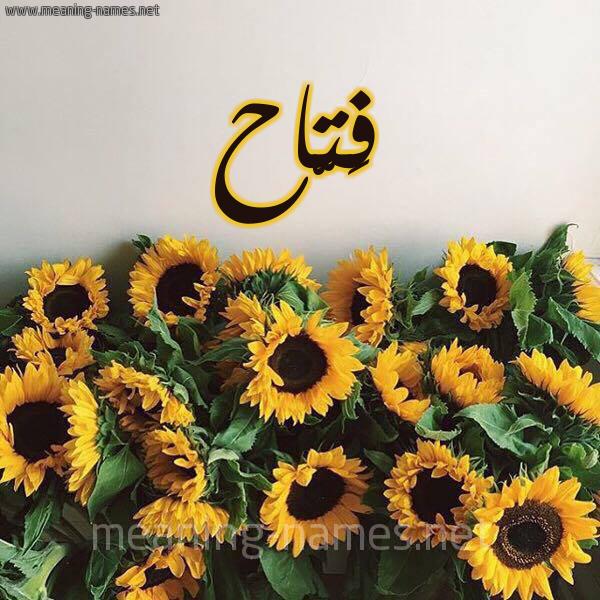 صورة اسم فَتّاح FATAH شكل 17 صوره دوار الشمس للإسم بخط رقعة