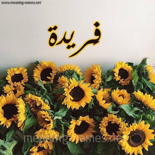صورة اسم فَريدة FARIDH شكل 17 صوره دوار الشمس للإسم بخط رقعة