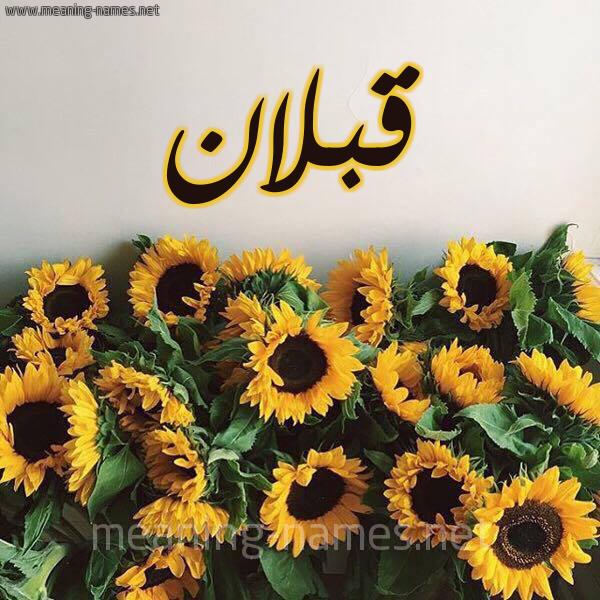 صورة اسم قبلان Qblan شكل 17 صوره دوار الشمس للإسم بخط رقعة