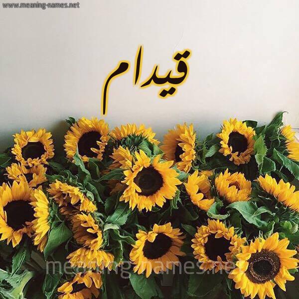 صورة اسم قيدام Qydam شكل 17 صوره دوار الشمس للإسم بخط رقعة