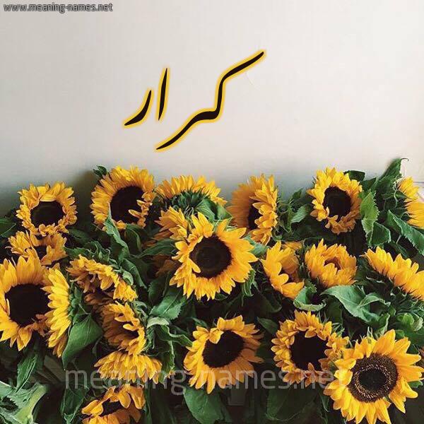 صورة اسم كرار karrar شكل 17 صوره دوار الشمس للإسم بخط رقعة
