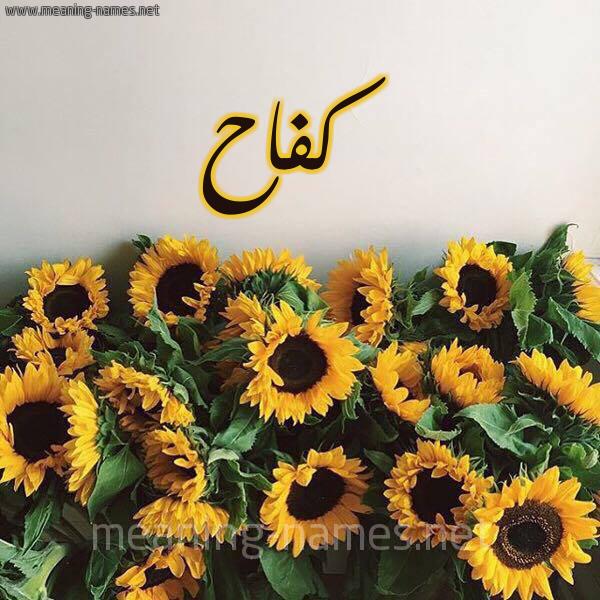 صورة اسم كفاح Kfah شكل 17 صوره دوار الشمس للإسم بخط رقعة