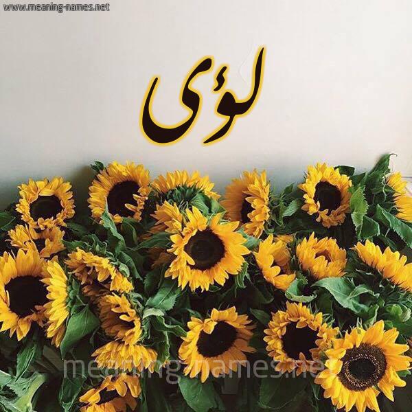 صورة اسم لؤى Loai شكل 17 صوره دوار الشمس للإسم بخط رقعة