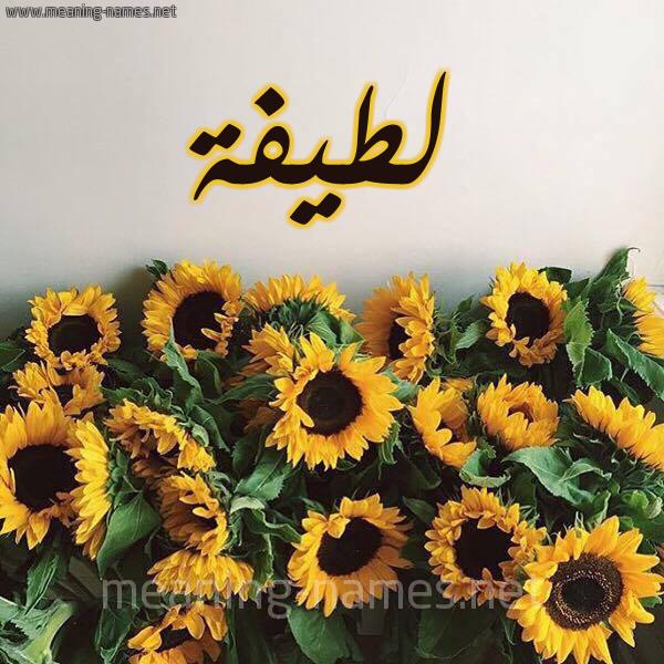 صورة اسم لطيفة Latifa شكل 17 صوره دوار الشمس للإسم بخط رقعة