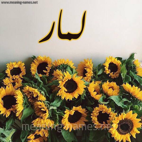 صورة اسم لمار Lmar شكل 17 صوره دوار الشمس للإسم بخط رقعة
