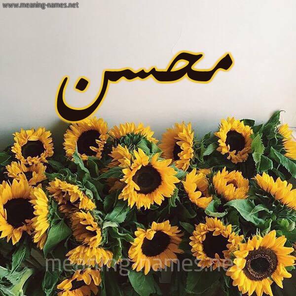 صورة اسم محسن Mohsen شكل 17 صوره دوار الشمس للإسم بخط رقعة