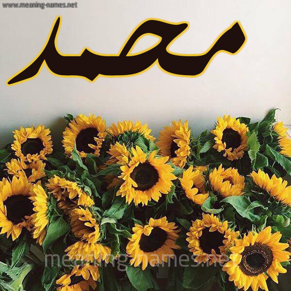 شكل 17 صوره دوار الشمس للإسم بخط رقعة صورة اسم محمد Mohammed