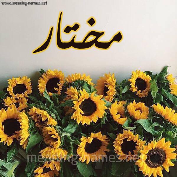 صورة اسم مختار Mokhtar شكل 17 صوره دوار الشمس للإسم بخط رقعة