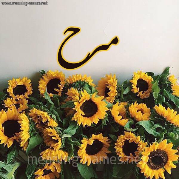 صورة اسم مرح Mrh شكل 17 صوره دوار الشمس للإسم بخط رقعة