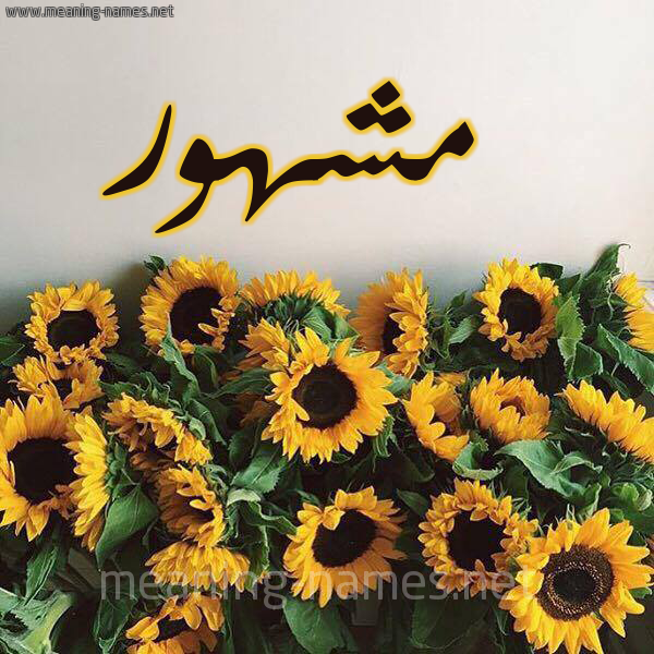 صورة اسم مشهور Mshhor شكل 17 صوره دوار الشمس للإسم بخط رقعة