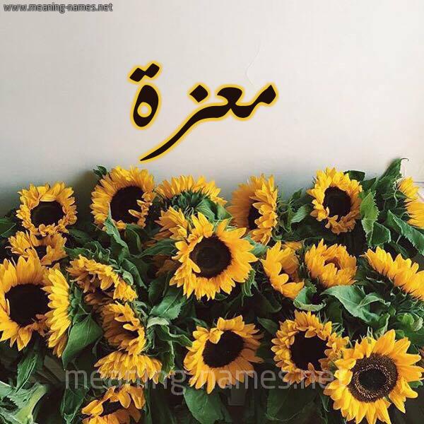 صورة اسم معزة Mazah شكل 17 صوره دوار الشمس للإسم بخط رقعة