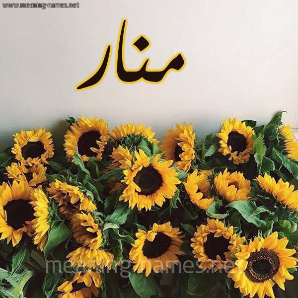 صورة اسم منار Manar شكل 17 صوره دوار الشمس للإسم بخط رقعة
