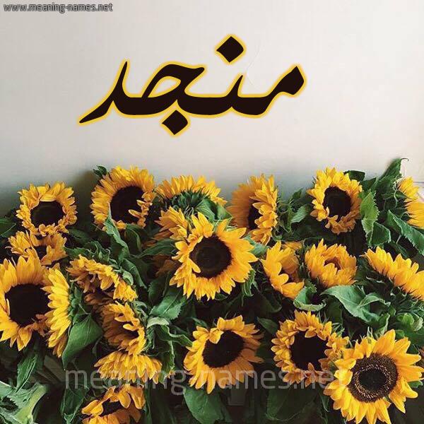 صورة اسم منجد Mngd شكل 17 صوره دوار الشمس للإسم بخط رقعة