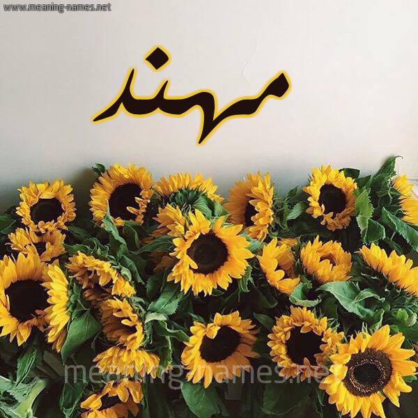 صورة اسم مهند Mohaned شكل 17 صوره دوار الشمس للإسم بخط رقعة