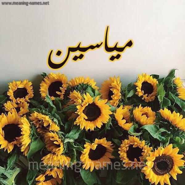 صورة اسم مياسين miaseen شكل 17 صوره دوار الشمس للإسم بخط رقعة