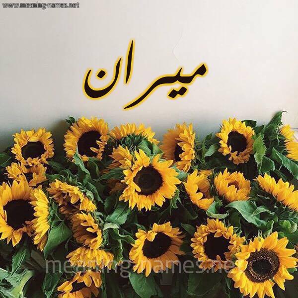 مشاهير يحملون اسم ميران و معنى اسم ميران قاموس الأسماء و المعاني