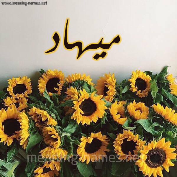 صورة اسم ميهاد mihad شكل 17 صوره دوار الشمس للإسم بخط رقعة