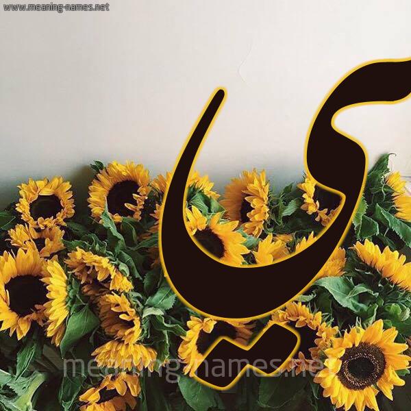 شكل 17 صوره دوار الشمس للإسم بخط رقعة صورة اسم مي Mai