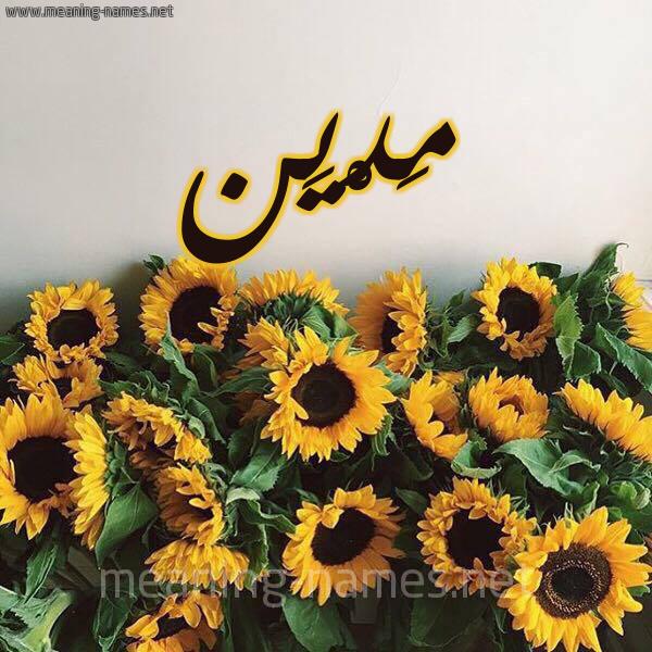صورة اسم مَدْيَن Madian شكل 17 صوره دوار الشمس للإسم بخط رقعة
