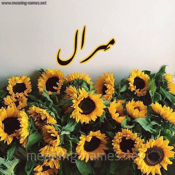 صورة اسم مَرال Maral شكل 17 صوره دوار الشمس للإسم بخط رقعة